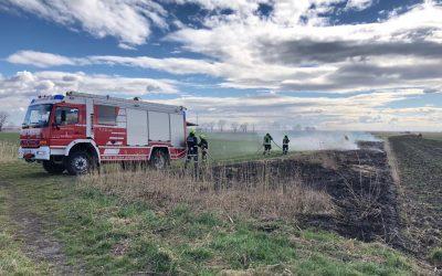 Einsatz 8, 14.03.2019 – Brandeinsatz / Flurbrand klein