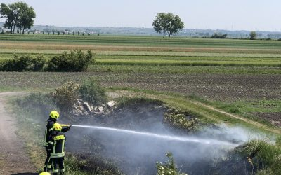 Einsatz 13, 18.05.2020 – Brandeinsatz / Flurbrand klein